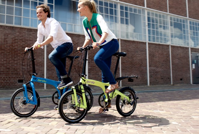 Birdy Foldable Bicycle